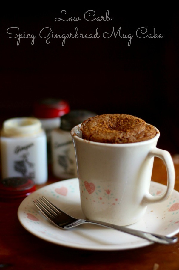 low-carb-spicy-gingerbread-mug-cake-title