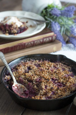 Low Carb & Sugar-Free Berry Crumble