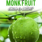 Erythritol vs. Monk Fruit: Which is Better?