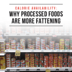 Calorie Availability: Why Processed Foods are More Fattening