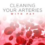 ArteriesFat_1